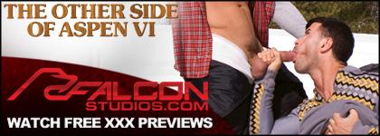 Click here for Falcon Studios website
